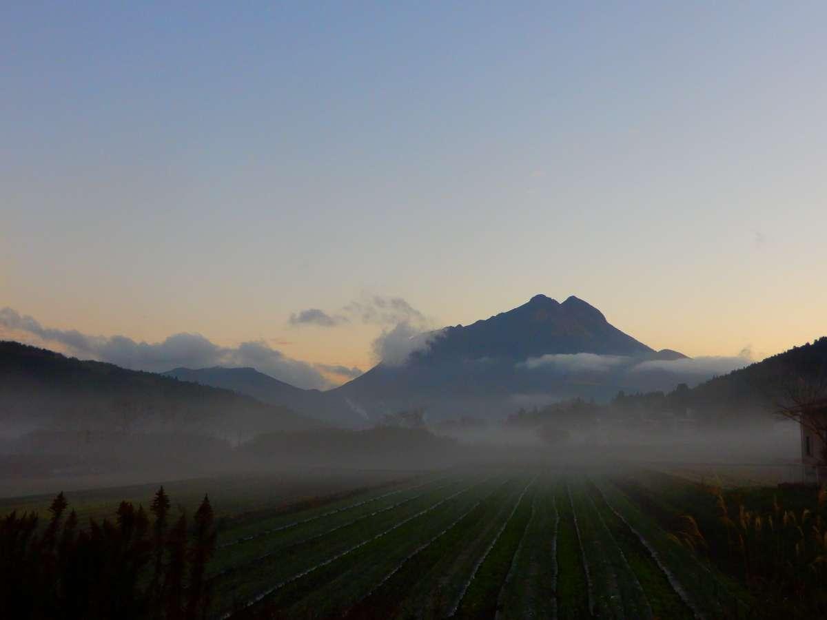 2020/11/24 早朝の由布岳 庭先からの一枚