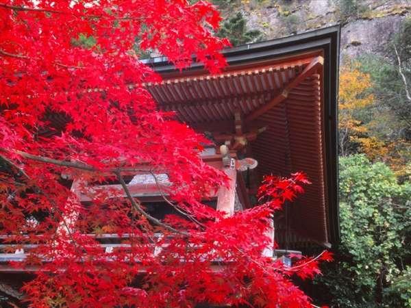鳳来寺山の紅葉■当ホテルから車で約1時間