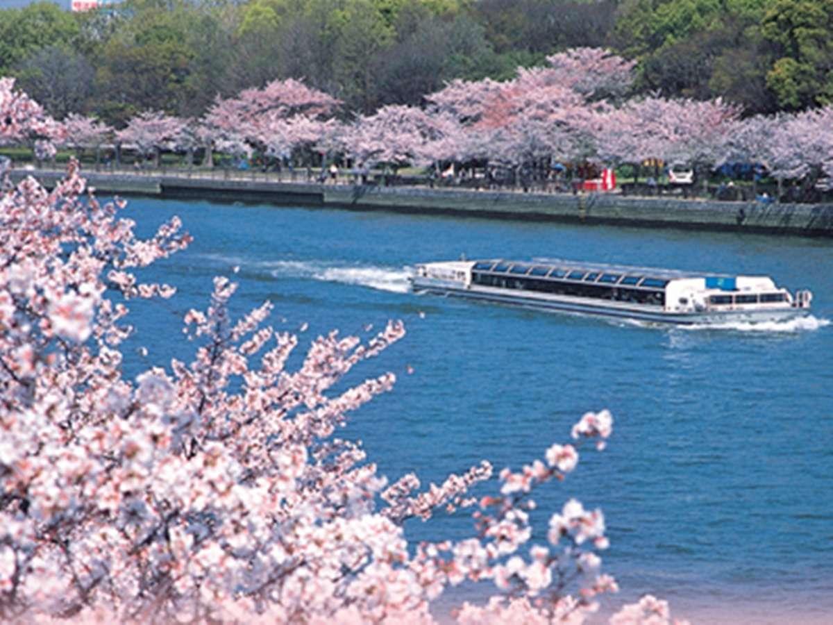 天満橋駅そばの大川は春になると桜の絶景スポットに!