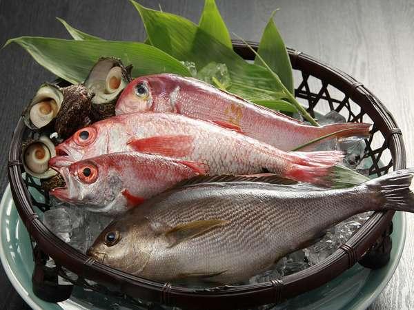 食材◆新鮮な日本海の海の幸をそろえお待ち致しております。