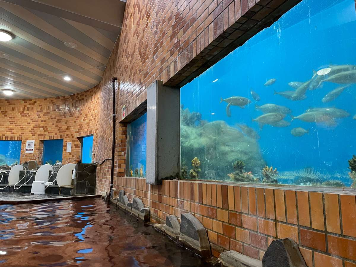 水族館風呂
