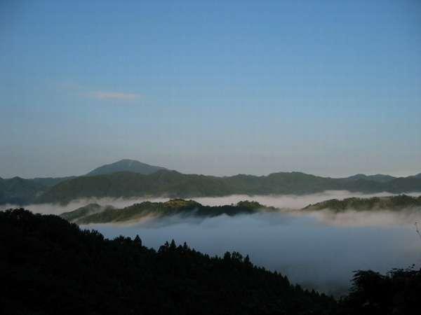 幻想的な朝霧