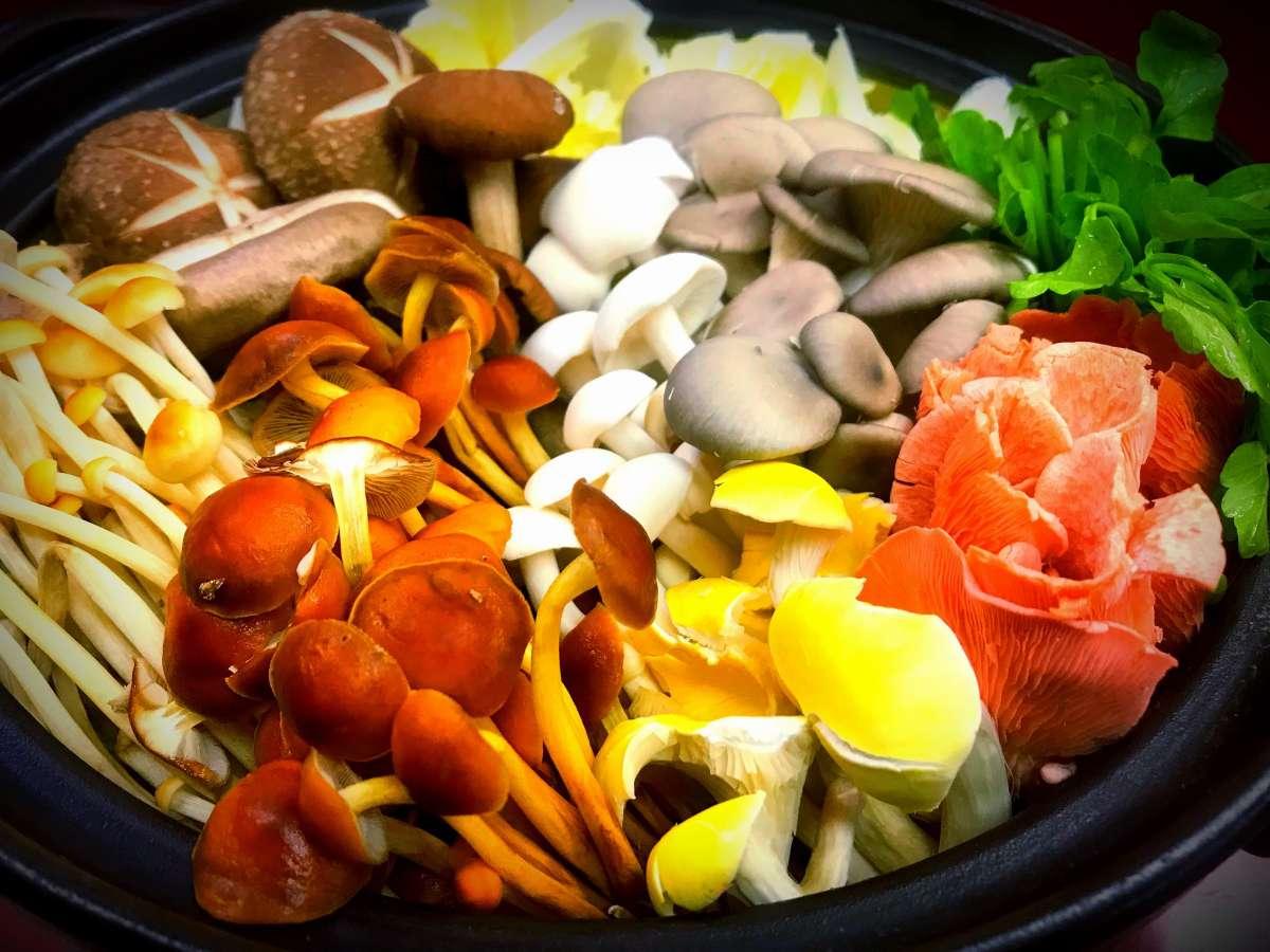 The Umenoya Matsukawakan -Four Seasons Inspired-