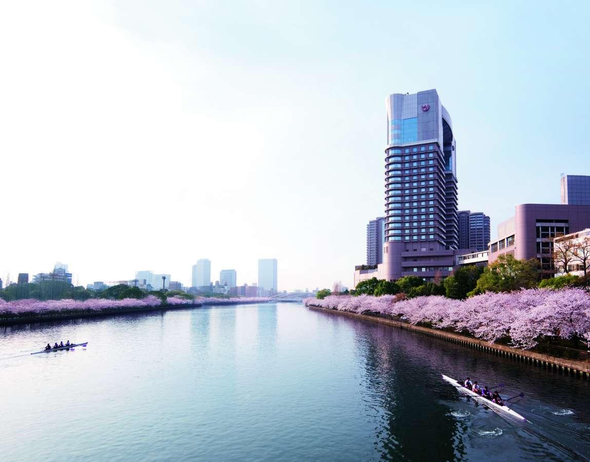 ~春~桜の名所に建つホテル