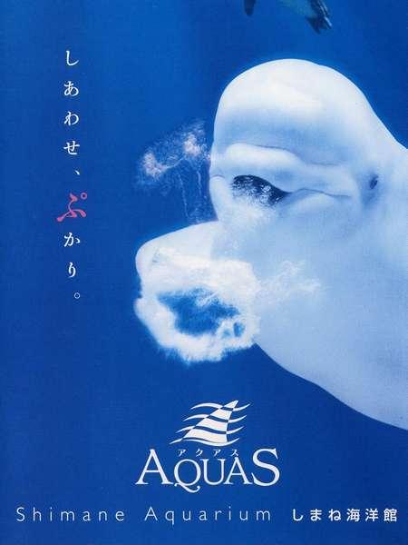 しまね海洋館「アクアス」:幸せのバブルリングを見に行こう!車で8分 0855-28-3900