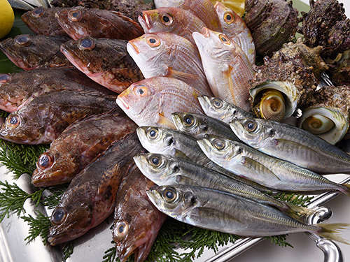 【夕食】新鮮な長崎の地魚を目の前のグリルで贅沢に調理いたします!