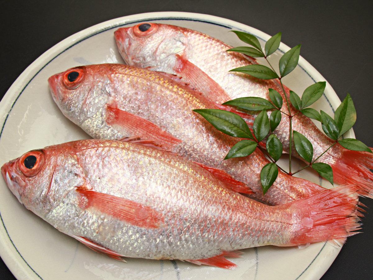 ◆【のどぐろ】のどぐろは《高級魚》として知られており、「幻の魚」などと称されることもある魚です。