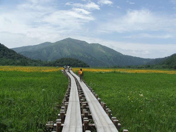 日本最大の山岳湿地尾瀬国立公園