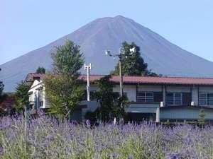 雄大な富士を望む外川荘