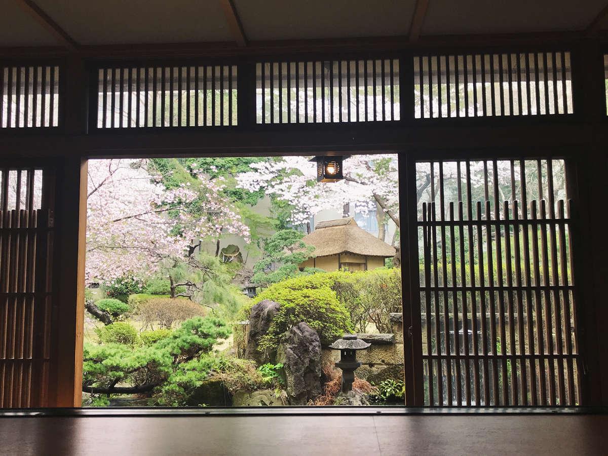個室食事処【蔵膳】春のイメージ