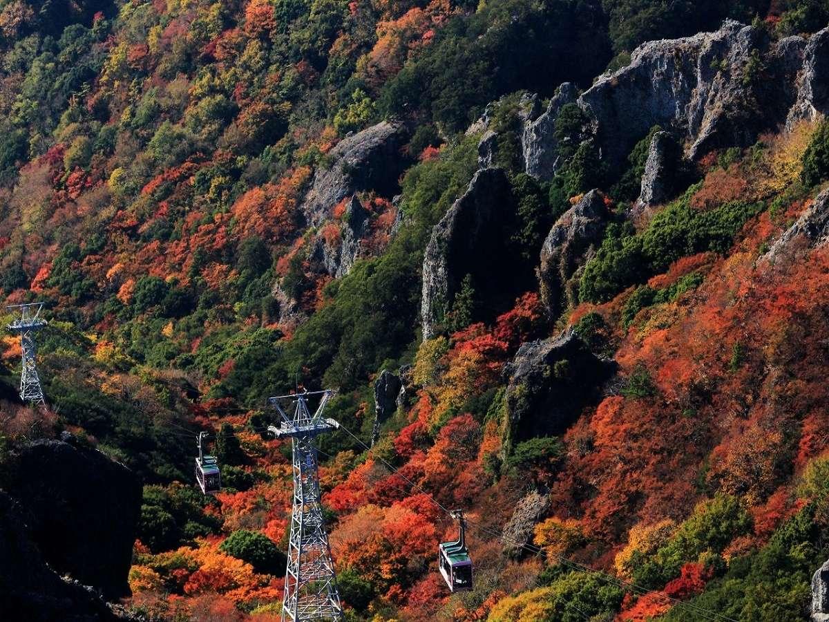 日本三大渓谷の一つ【寒霞渓】車で山頂まで40分♪