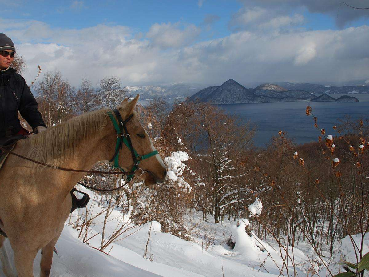 【乗馬】冬の乗馬体験