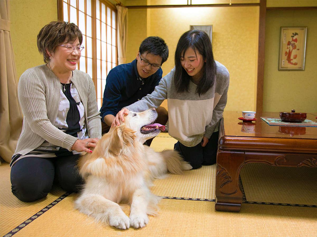 大型犬まで宿泊できるのは土湯でニュー扇屋だけ♪我が家のような『居心地の良さ』を目指しておもてなし。