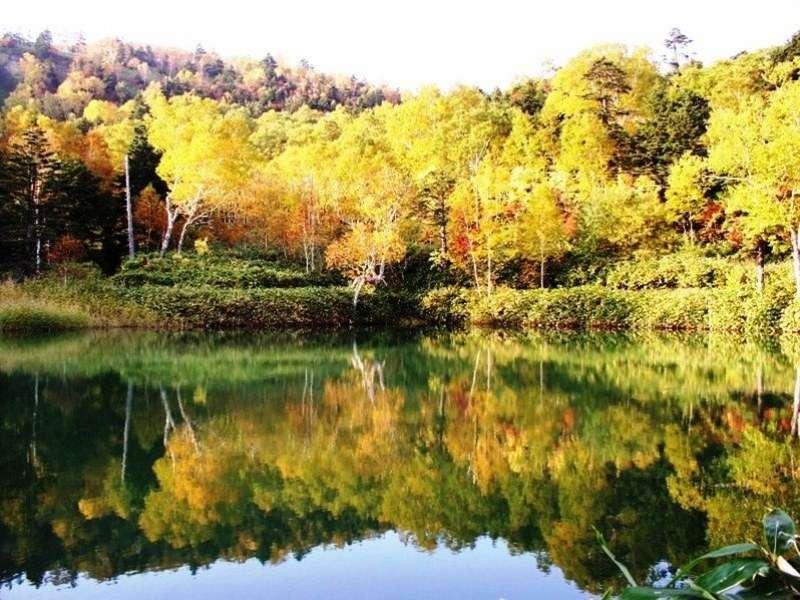 ホテル近辺(牛池)紅葉9月中旬~10月中旬