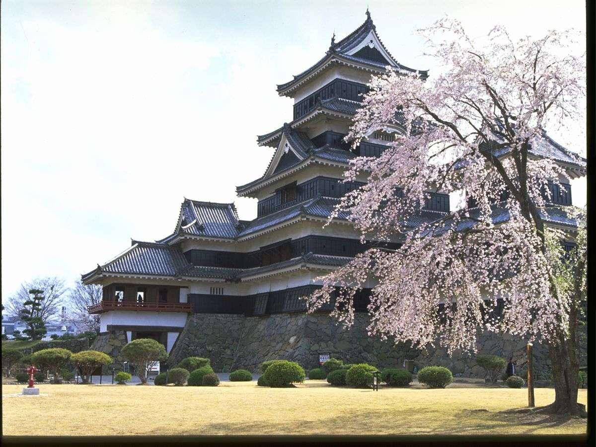 ■松本城の桜(写真提供:長野県観光機構)
