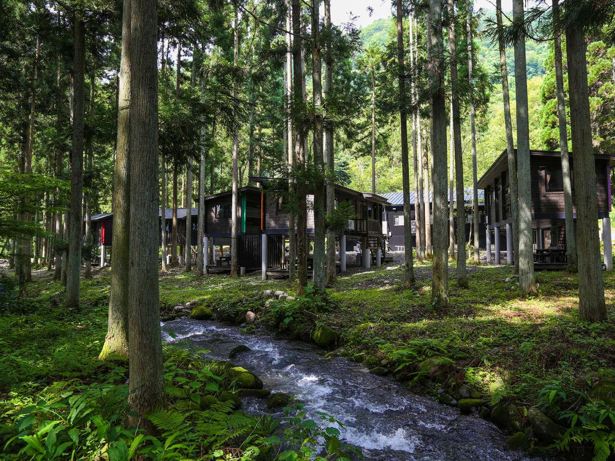 木々に囲まれ、長良川に面しています。