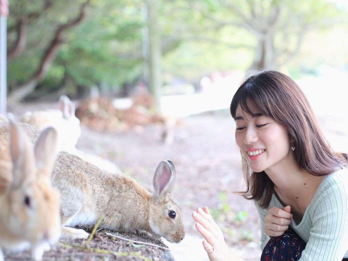ウサギと癒しのひと時
