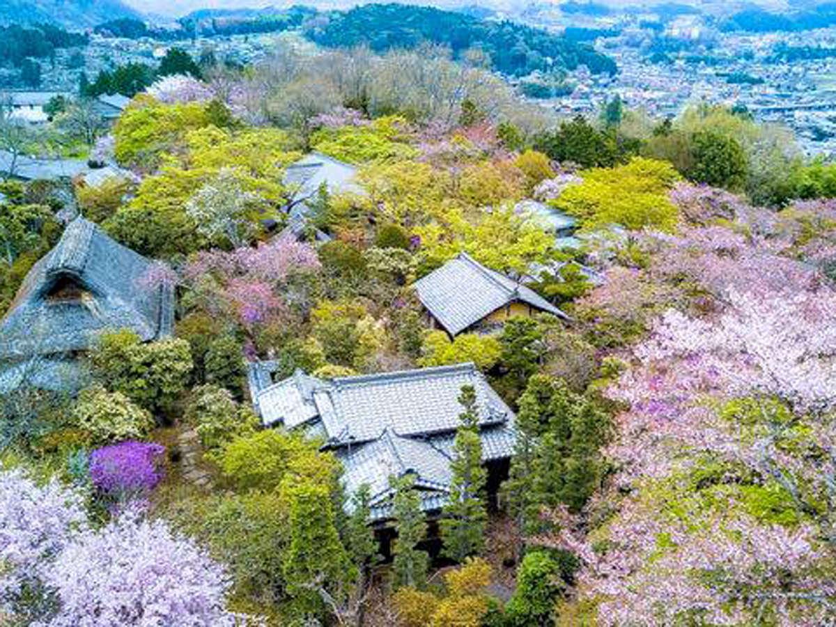 長多喜の春(一万坪の敷地に古民家の離れ客室)
