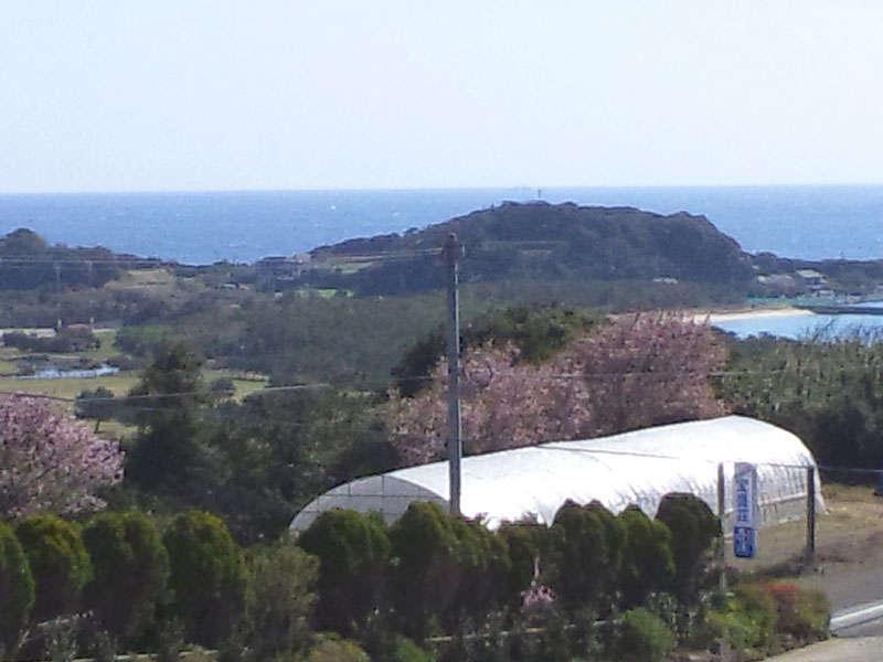 【宿からの眺め】玄界灘に囲まれたのどかな風景が広がります