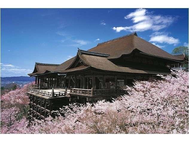 春には桜が咲き誇ります♪