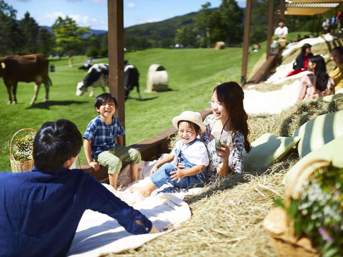 「巨大牧草ベッド」では、放牧されている牛を近くで眺めながら、北海道らしい牧歌的な風景を楽しめる