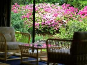 貴賓室(101号室[福禄寿])の専用庭園 5月