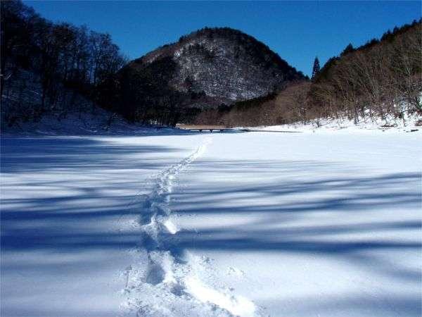 雪原と化した大沼の水面をスノーシューで歩いてみませんか?