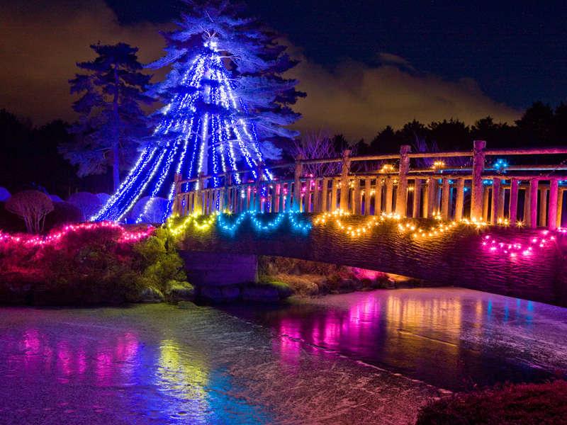 *冬のイルミネーション/大芝荘周辺が色とりどりに飾りつけられます♪