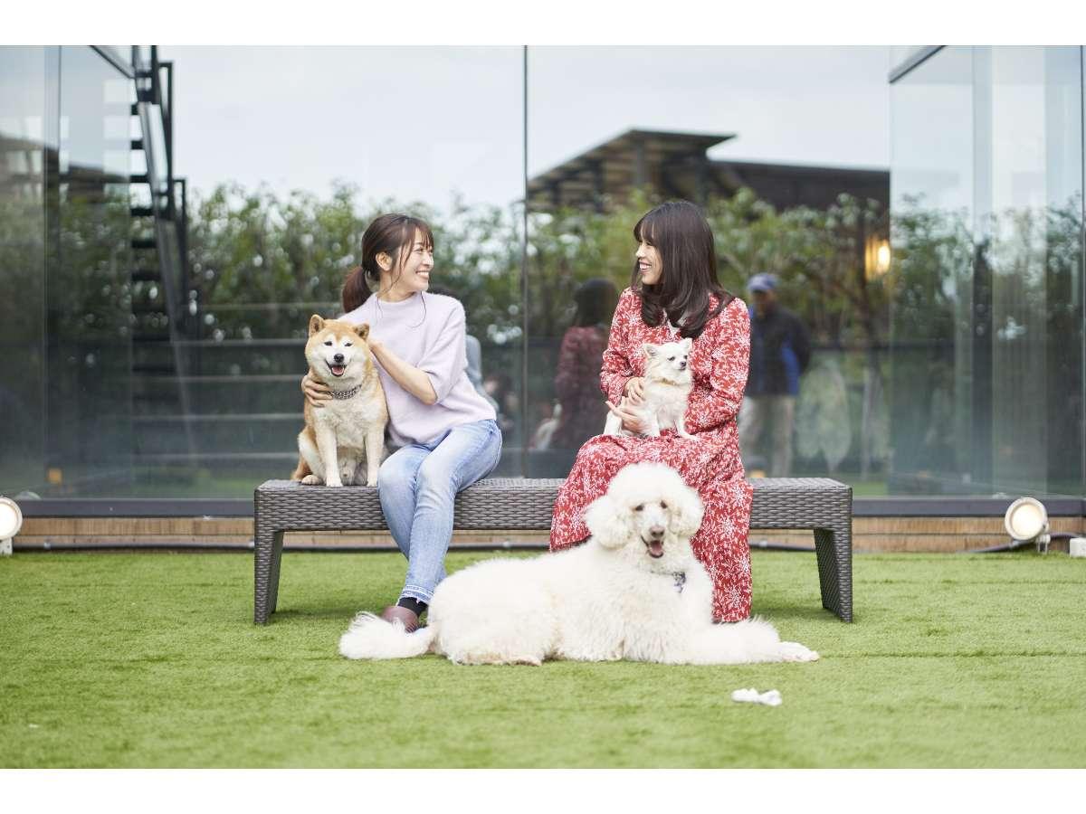 屋外愛犬コミュニティ広場(中庭):屋外に2ヶ所のコミュニティー広場!お友達との新たな出会いも!