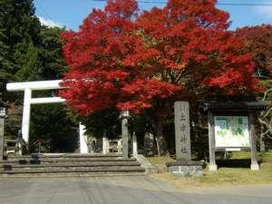 【車で10分】土津神社のもみじ。見頃は10月中旬~