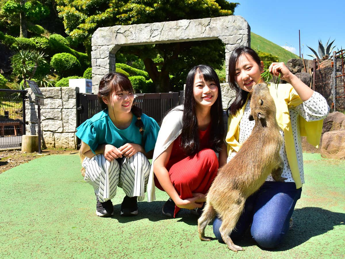【伊豆シャボテン動物公園】カピバラさんと記念撮影♪