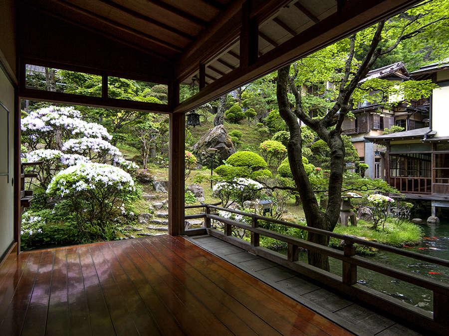 鮮やかな天然色の中庭