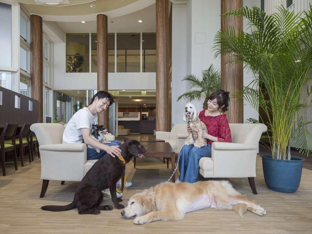 ワンコが主役の愛犬同伴専用ホテル★犬種や大きさ、頭数制限はありません!