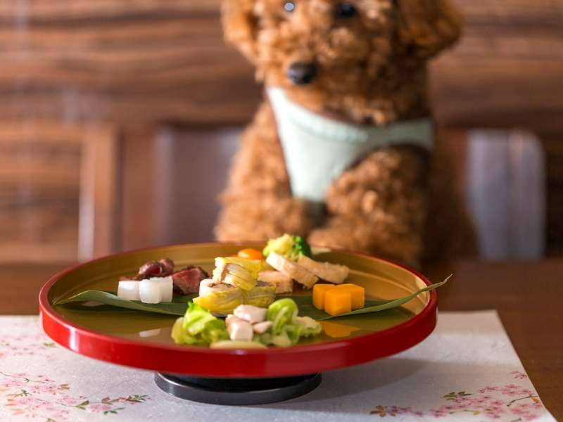 【ワンちゃん関連】ワンちゃんのお食事をご用意できます。夕食:会席2200円、朝食:朝食プレート1650円。