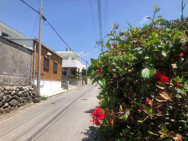 宿の前の道。一年中ハイビスカスが咲いています。左の茶色い建物が当宿のコテージ、5号室