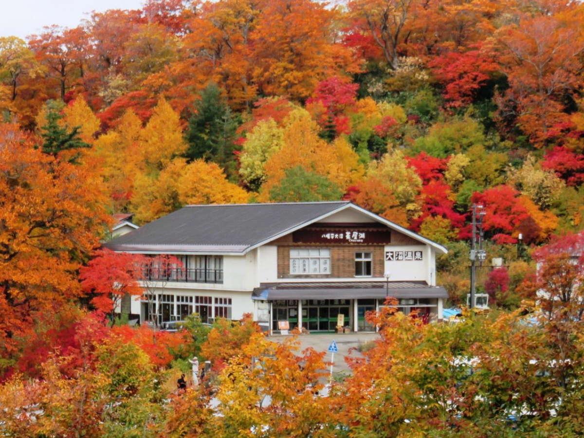 紅葉に包まれる八幡平大沼茶屋湖