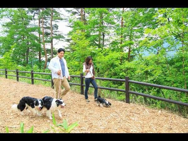 自然豊かな散策コースは、わんちゃんとのお散歩にもぴったりです。