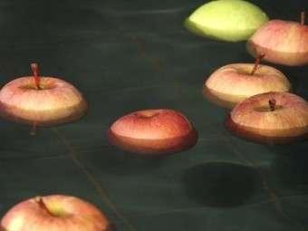 香り豊かな地元産りんごが浮かぶ「りんごの湯」