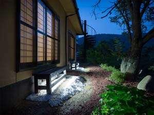 紅葉 夜の中庭