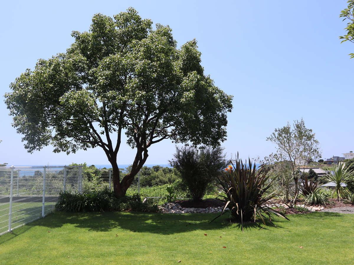 コテージ専用庭からの眺め