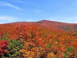 紅葉の秋田駒ヶ岳