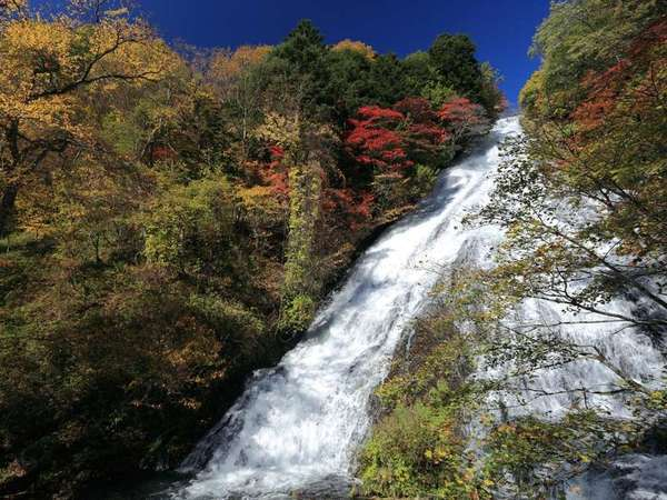 【湯滝】紅葉見頃の湯滝(10月中旬)
