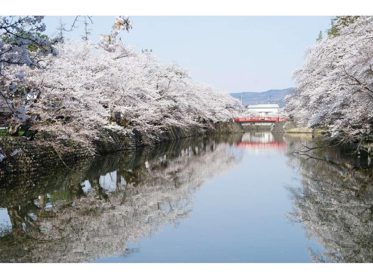 上杉公園は桜の名所です