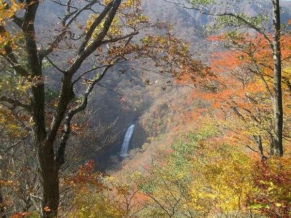 エコーライン「不動滝」紅葉シーズン