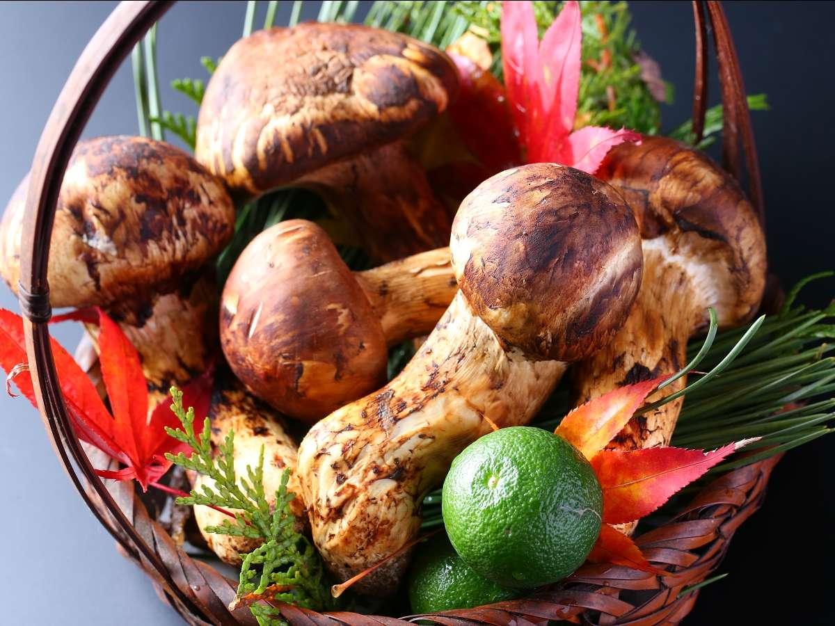 秋の味覚の王様といえば「松茸」 岩村山荘の秋グルメ松茸料理コースは毎年大好評です。