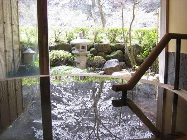 貸切風呂「水光の湯(加温、掛け流し)」、桜を映す