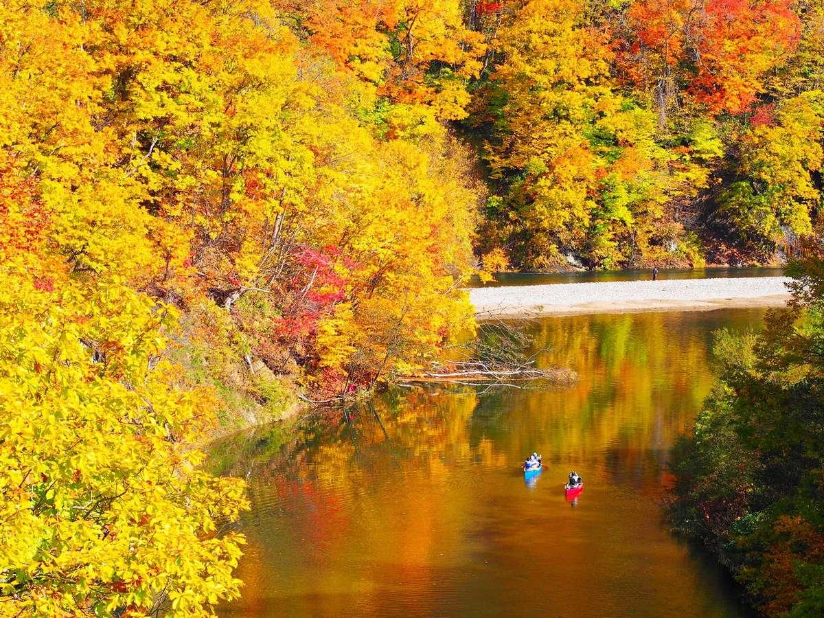 【カナディアンカヌー】緩やかな豊平川を下るカヌー。特に紅葉時期に見上げる渓谷美が絶景
