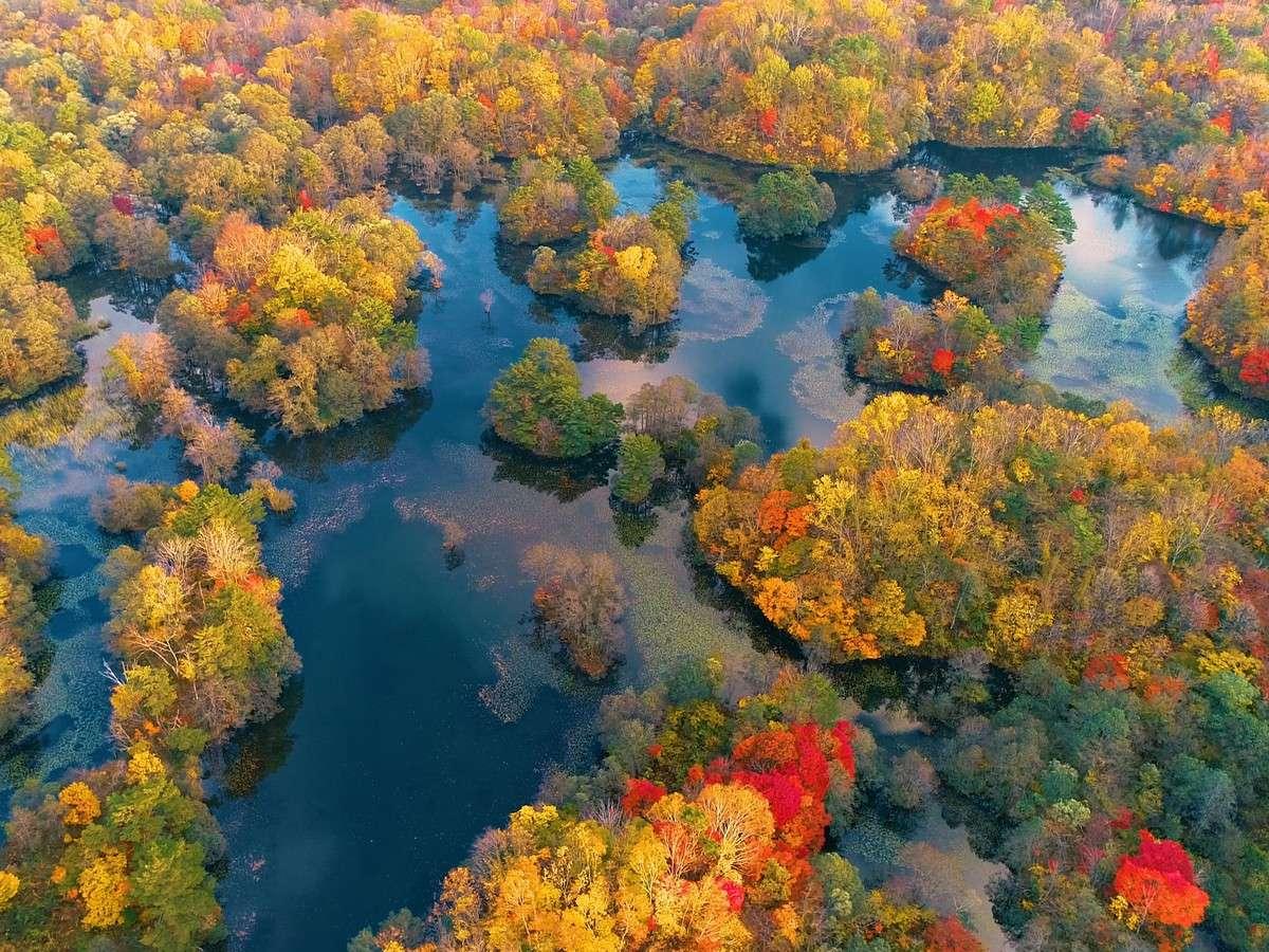 【秋の中瀬沼】裏磐梯を代表するビュースポット「中瀬沼展望台」から紅葉の絶景を一望できます。
