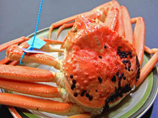 冬の味覚☆ずわい蟹をまるごと1杯分堪能♪