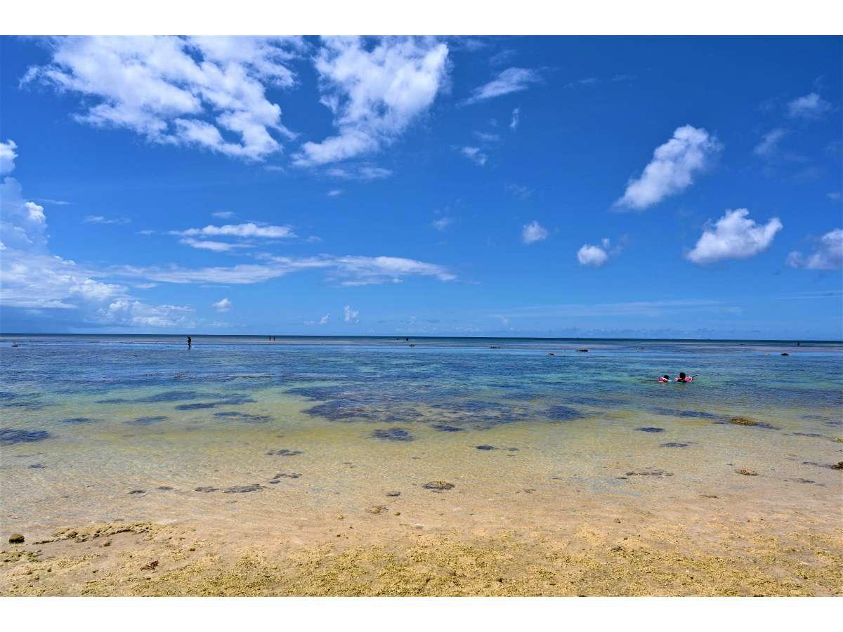 米原ビーチは車で10分。シュノーケリングや海水浴を楽しみましょう。